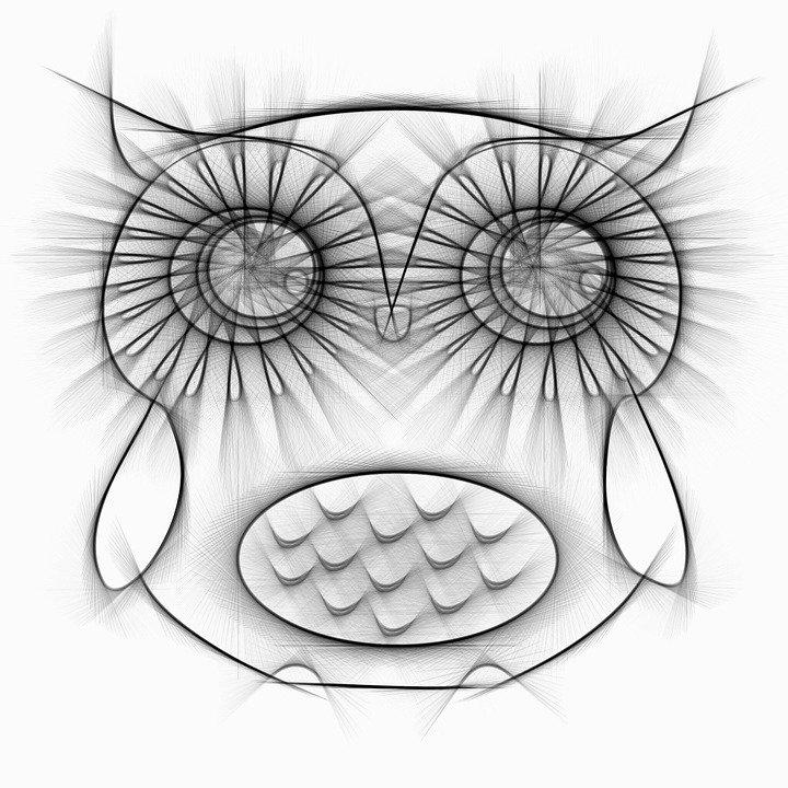 Dibujos De Buhos Tutorial Lindos Buhos Animados Para Pintar