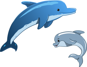 Delfines animados con movimiento