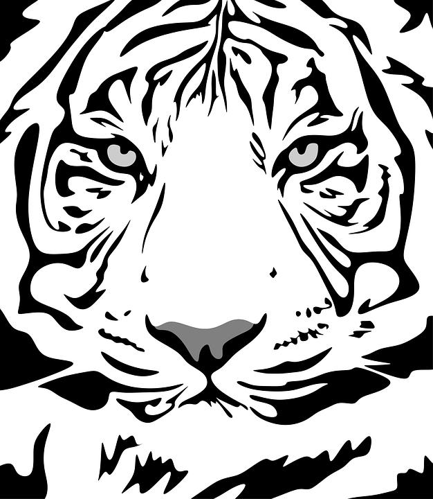 🥇 Dibujos de Animales | Imágenes de animales para dibujar |