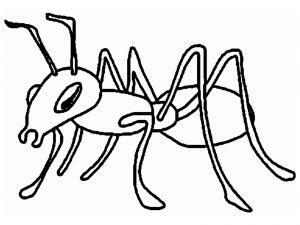 cómo dibujar una hormiga