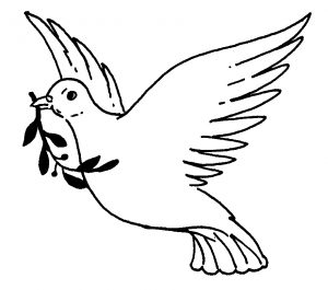 cómo se dibuja una paloma