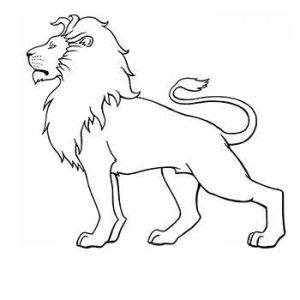 cara de leon dibujo