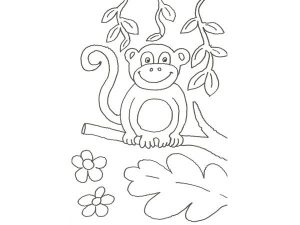 cara de mono dibujo