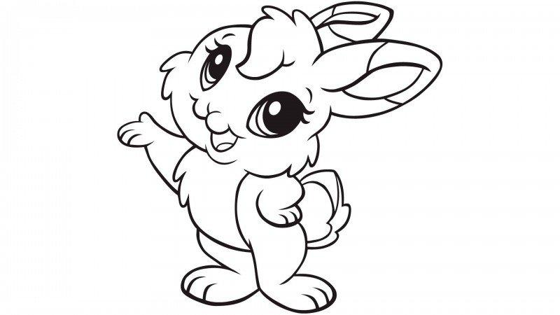 ᐈ Dibujos De Conejos Guia Pintar Un Conejo Kawaii