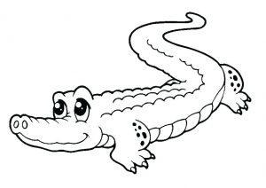 caricaturas de lagartijas