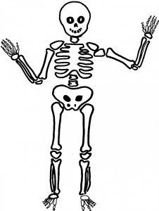 como dibujar esqueletos