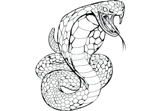 como dibujar una serpiente facil