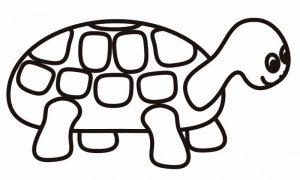 como dibujar una tortuga facil