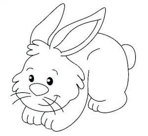 conejo animado