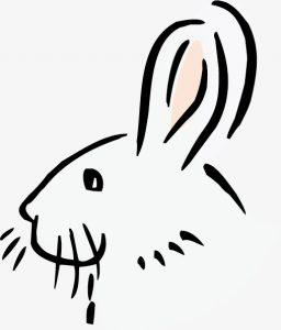 conejo dibujo animado