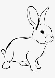 conejo para pintar