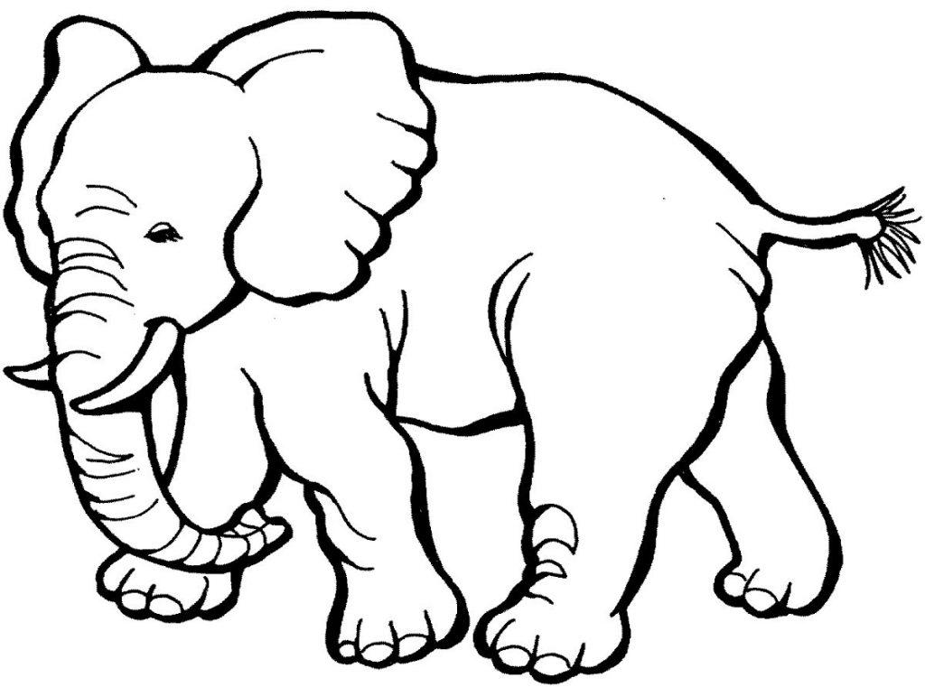 Dibujos De Elefantes Tutorial Bellos Elefantes Animados
