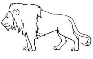 dibujo de leon infantil