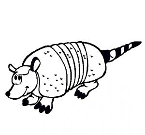dibujo de un armadillo para colorear
