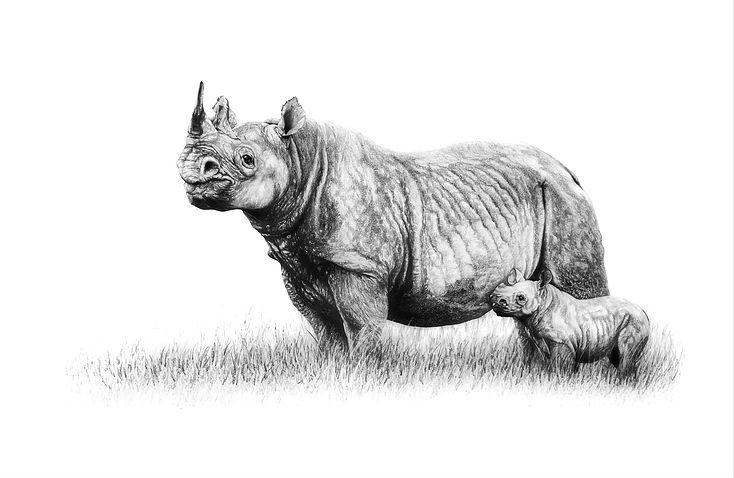 dibujos de animales domesticos para niños
