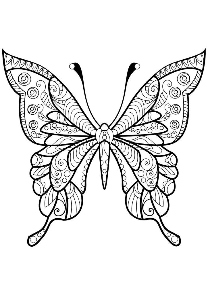 Dibujos De Insectos Tutorial Tutorial Para Pintar Insectos