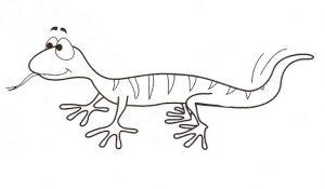 dibujos de lagartijas para niños