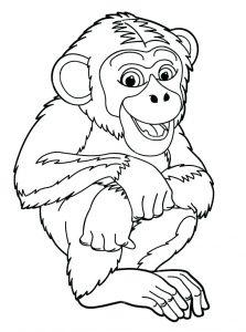 dibujos de monos para colorear