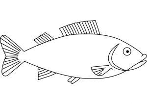 dibujos de peces animados