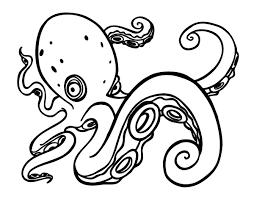 dibujos de pulpos a color