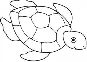 dibujos faciles de tortugas