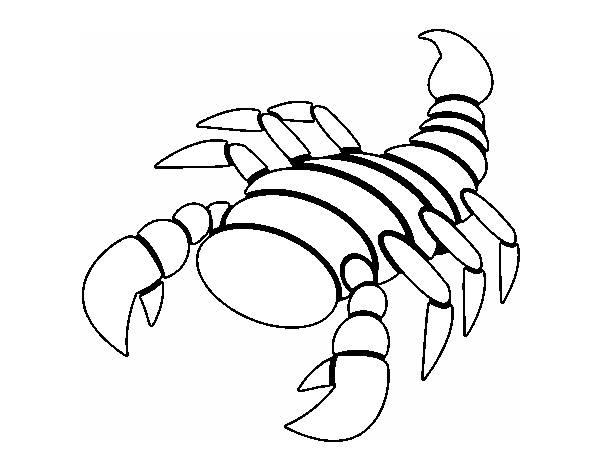 Dibujos De Escorpiones Pinta Un Escorpion Facil Dibujos Faciles