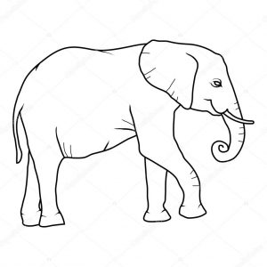 elefante para imprimir