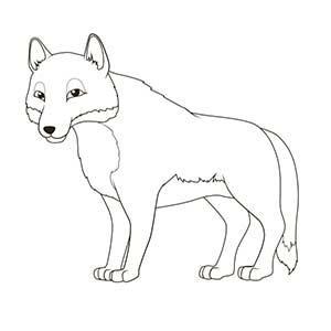 fotografías de lobos