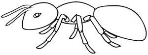 fotos de hormigas animadas