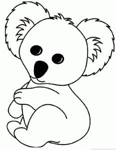 fotos de koalas bebes