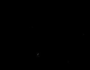 imagen rinoceronte