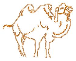 imagenes de camellos para dibujar
