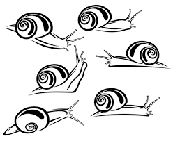 imagenes de caracoles para colorear