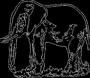 imagenes de elefantes para dibujar