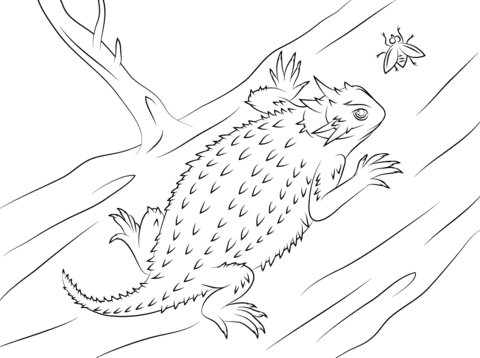 imagenes de lagartijas animadas