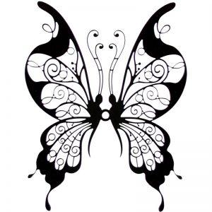 imagenes de mariposas de colores