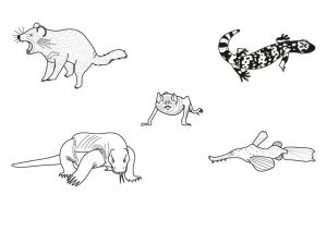 imagenes de monstruos para dibujar