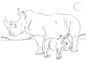imagenes de rinocerontes para imprimir