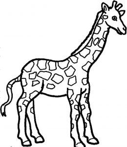 jirafa dibujo infantil