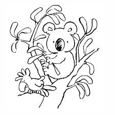 koala imagenes animadas