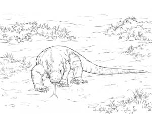 lagarto para dibujar