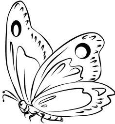 mariposa dibujo
