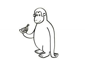 mono araña para dibujar