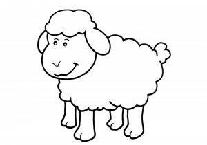 ovejas pintadas