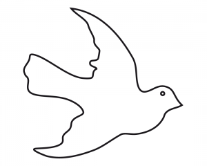 paloma blanca dibujo