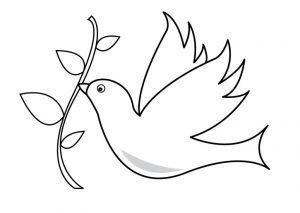 paloma del espiritu santo dibujo