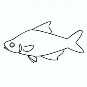 peces para dibujar
