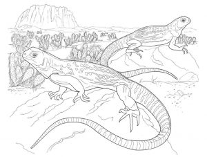 reptil parecido al lagarto