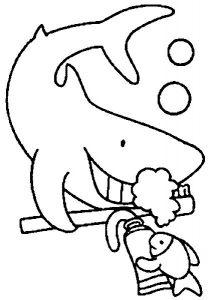 tiburon dibujo