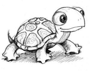 tortuga dibujo animado